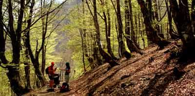 Parque Natural de Redes, 21-23 de abril de 2007